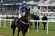 Seefood and jockey Charlotte Crane go to the start for the 4.05PM The Randox Health Foxhunters' Steeple Chase (Class 2) 2m 5f during the Grand National Festival Week at Aintree, Liverpool, United Kingdom on 4 April 2019.