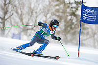 Piche Invitational U12 mens first run 17Mar18.  ©2018 Karen Bobotas Photographer
