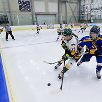 1st year forward Lilla Carpenter-Boesch (17) of the Regina Cougars in action during the Women's Hockey Home Game on October 14 at Co-operators arena. Credit: Arthur Ward/Arthur Images