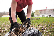 Alexis Reed cleans up leaves at the Athens Dairy Arts Barn during Athens Beautification Day on Sunday, April 22th 2018.