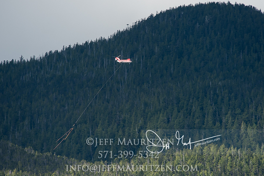 Helicopter logging in British Columbia, Canada.