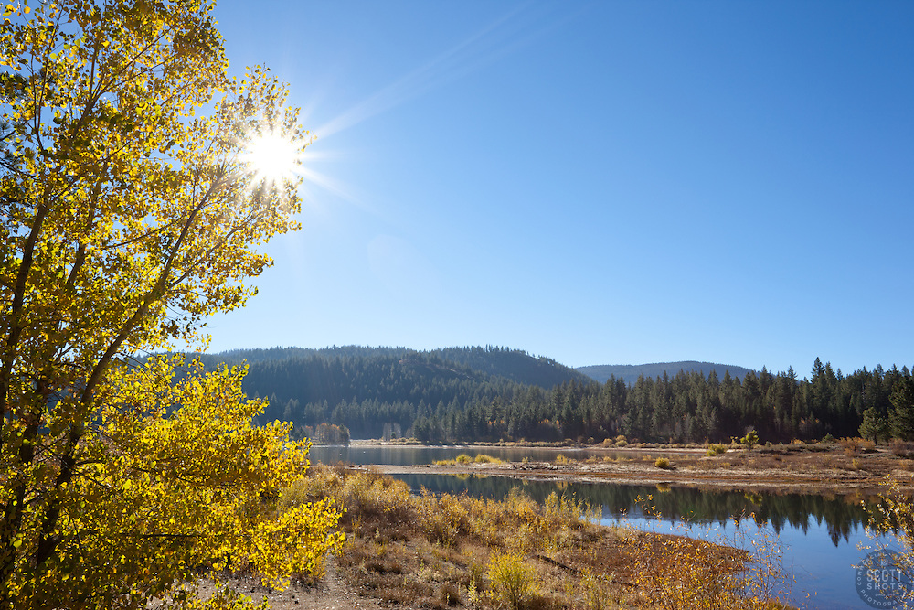 """Aspens at Spooner Lake"" - These aspens and sun were photographed in the fall at Spooner Lake, Nevada."