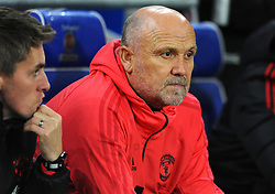 Manchester United assistant caretaker manager Mike Phelan looks on- Mandatory by-line: Nizaam Jones/JMP - 22/12/2018 -  FOOTBALL - Cardiff City Stadium - Cardiff, Wales-  Cardiff City v Manchester United - Premier League