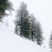 Tanner Flanagan skins out of the Teton backcountry near Jackson Hole Mountain Resort.