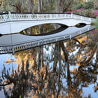 Long Bridge and reflections of Spanish moss covered trees, at Magnolia Plantation, near Charleston, South Carolina