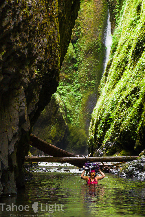 Lower Oneonta Falls in the Columbia River Gorge in Oregon. This is one of the most spectacular short waterfall hikes around. The lush greenery and waterfalls of the Pacific Northwest are a must visit.