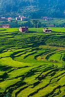 Sudal, Kathmandu Valley, Nepal.