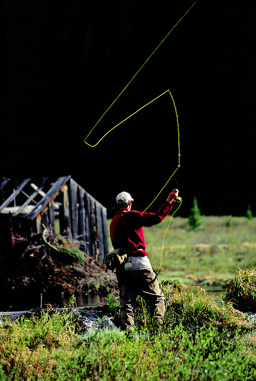 A fly fisherman casts his fly line across a beaver pond in the Rocky Mountains of Colorado