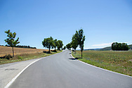 Empty country Road in the Czech Republic with Trees and fields on both sided, and a blue clear summer sky