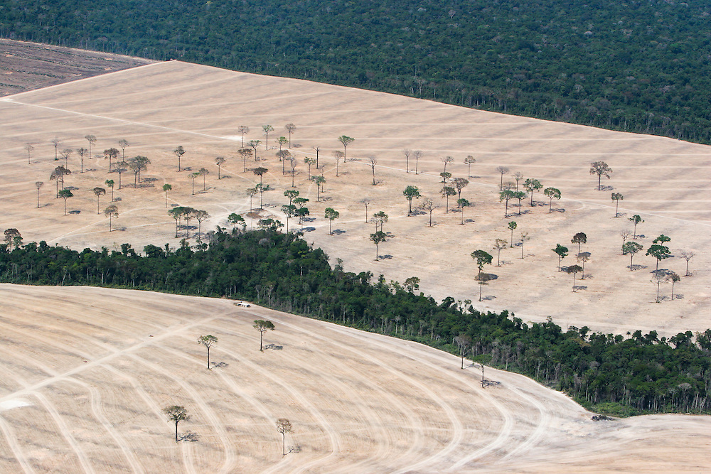 Aug. 7, 2005: Deforested land for soy plantations near Sinop, Mato Grosso State, Brazil. ©Daniel Beltra