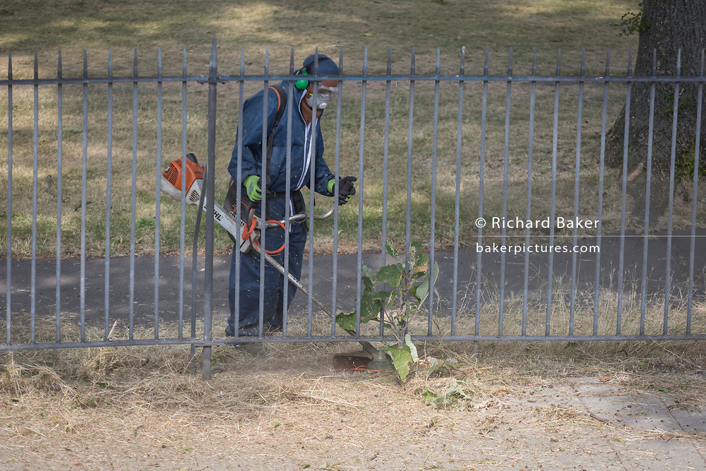A council contractor uses a strimmer on weeds along the railings of Ruskin Park, on 5th July 2018, in London, England.