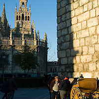 La Plaza del Triunfo in late afternoon with two cocheros awaiting business.  The Cathedral and Giralda tower is in the background and one of the tower's of the Alcazar is visible on the right. Seville, Andalusia, Spain.