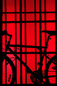 Bicycle on window