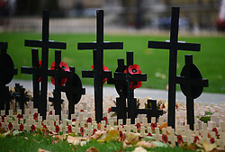 © Licensed to London News Pictures.05/11/2013. London, UK. Hundreds of crosses with poppies are placed in the Field of Remembrance at Westminster Abbey.Photo credit : Peter Kollanyi/LNP
