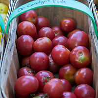 A basket of 'Dr. Carolyn's Pink'  heirloom tomatoes.