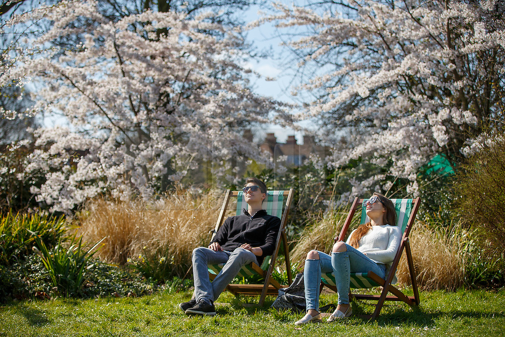 © Licensed to London News Pictures. 02/04/2016. London, UK. People enjoying sunshine and warm weather in Regent's Park in London on Saturday, 2 April 2016. Photo credit: Tolga Akmen/LNP