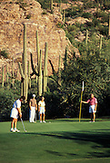 Desert golfing at its finest, a long put attempt with golfer ready to pull the flag, Ventana Canyon Golf and Racquet Club, Tucson, Arizona..Media Usage:.Subject photograph(s) are copyrighted Edward McCain. All rights are reserved except those specifically granted by McCain Photography in writing...McCain Photography.211 S 4th Avenue.Tucson, AZ 85701-2103.(520) 623-1998.mobile: (520) 990-0999.fax: (520) 623-1190.http://www.mccainphoto.com.edward@mccainphoto.com
