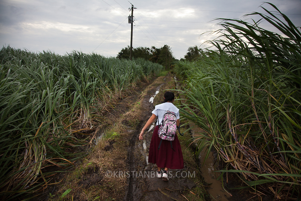 Jenibell on her way to school. She had to take several years out of education to work in the sugar cane field and to assist her mother at home looking after her younger siblings but she is now back in school. She walks 1/2 through sugar cane fields and ride 10 min on a tricycle to get to school for 7.45am. She lives near Victorias City in the state Negros Occidental. Laura Vicuña is a non-profit charity working in Manila and in Bacolod in the state Negros Occidental in the Philippines.Bacolod in the state Negros Occidental in the Philippines.
