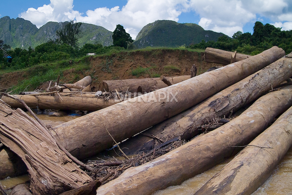 Felled round wood litters a bank of the  Marang River, Sangkulirang, East Kalimantan. The Un estimates that 88% of Indonesian timber exports are sourced illegally.