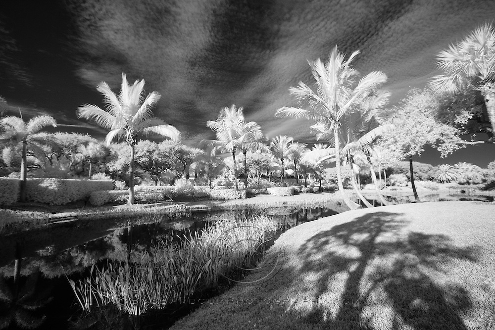 Infrared photo tropical Bermuda Bay