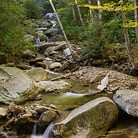 Fall foliage along a small stream, part of Boone Fork
