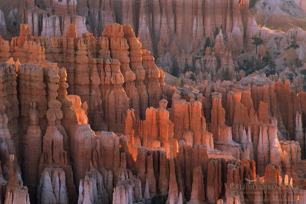 Morning light on hoodoos in Bryce Canyon from Inspiration Point Bryce Canyon National Park, UTAH