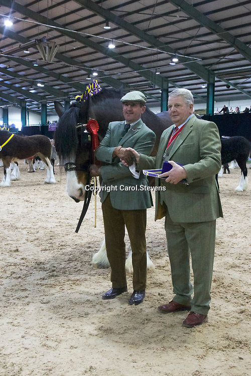 M J Bottomer with FIFIELD ADMIRAL   (No.23)<br />