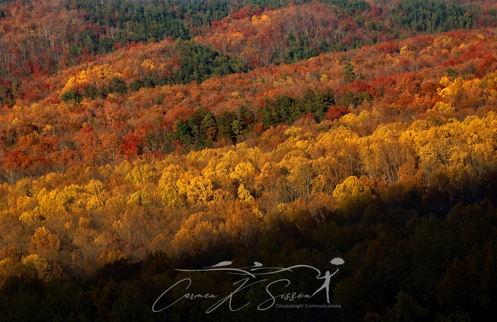 Leaves change colors in Cumberland Gap in the Great Smoky Mountains. (Photo by Carmen K. Sisson/Cloudybright)