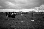 24/09/1963<br />