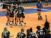 Arkansas Democrat-Gazette/BENJAMIN KRAIN --10/29/16--<br /> Jonesboro volleyball players celebrate their Class 6A victory over Marion after winning in 3 games during the State Finals in Hot Springs on Saturday.