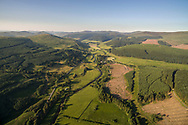 Commercial forestry plantations in the Scottish Borders.
