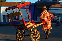 Madagascar. Antsirabe. Pousse-pousse, le taxi malgache. // Madagascar. Antsirabe. Pousse-pousse, the local taxi.