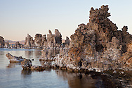 Mono Lake tufa rises out of the water, catching the last light of the day