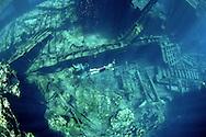 Snorkeling at the Polisini Greek Wreck  (Kinsei Maru), Silver Banks Marine Sanctuary, Dominican Republic, Caribbean Sea