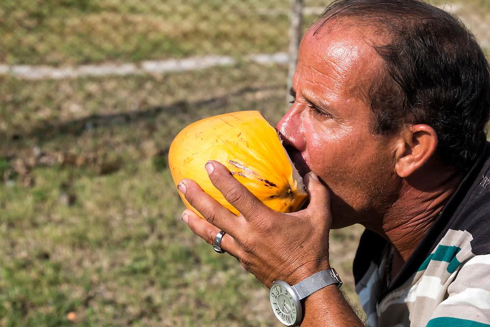 Selling coconuts near Jesus Menendez, Las Tunas, Cuba.