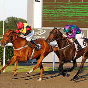 Tinkerbell Will and Richard Thomas winning the 8.10 race