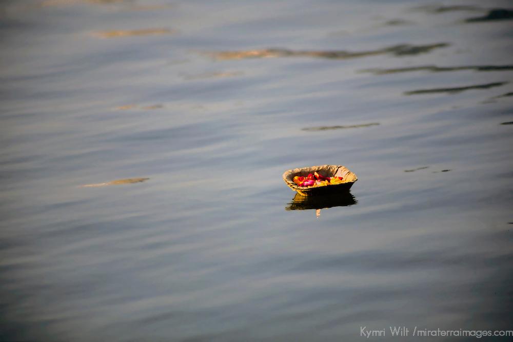 Asia, India, Uttar Pradesh, Varanasi. Ritual of sacred offerings float the Ganges River in Varanasi.