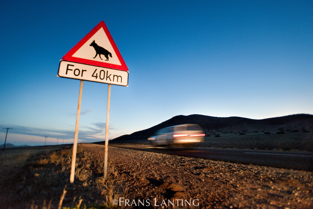 Brown hyena road sign near Luderitz, Namibia