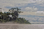 Misty rainforest along the banks of Napo River, Ecuador.