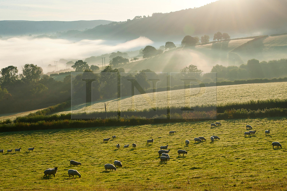 © Licensed to London News Pictures. 20/09/2019. Llanddewi'r Cwm, Powys, UK. St David's Church in the small Welsh village of Llanddewi'r Cwm in Powys is surrounded by mist after a cold night with temperatures dropping to around 4.5 deg C. Photo credit: Graham M. Lawrence/LNP