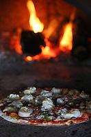 lukes kitchen photos kuaotunu new zealand pizza   cafe and restaurant photography by felicity jean photography coromandel peninsula kuaotunu photos