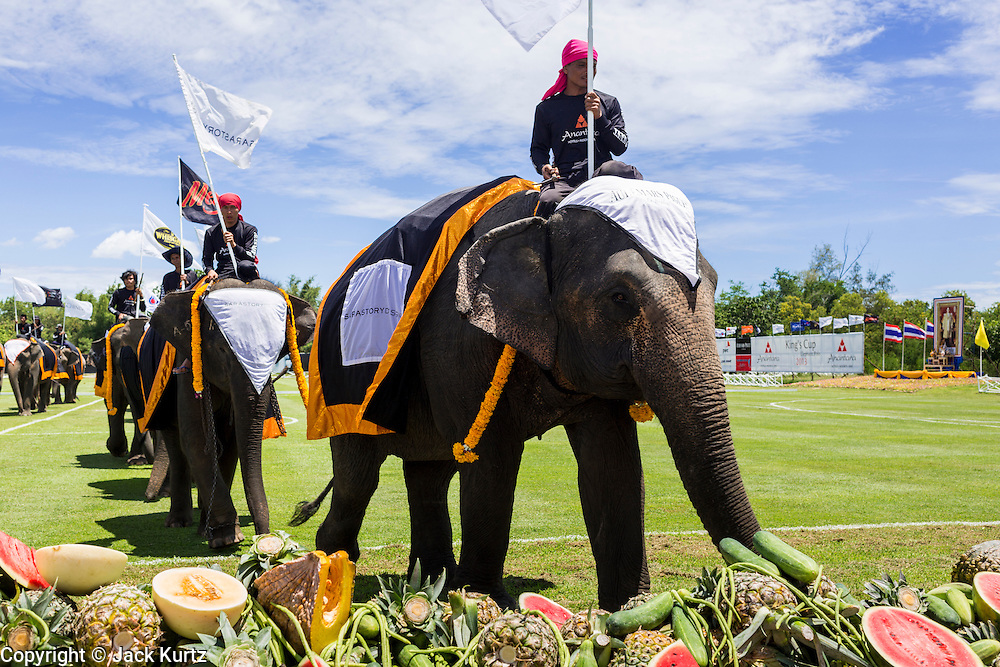 "29 AUGUST 2013 - HUA HIN, PRACHUAP KHIRI KHAN, THAILAND: Elephants walk into the fruit buffet at the King's Cup Elephant Polo Tournament in Hua Hin. The tournament's primary sponsor in Anantara Resorts and the tournament is hosted by Anantara Hua Hin. This is the 12th year for the King's Cup Elephant Polo Tournament. The sport of elephant polo started in Nepal in 1982. Proceeds from the King's Cup tournament goes to help rehabilitate elephants rescued from abuse. Each team has three players and three elephants. Matches take place on a pitch (field) 80 meters by 48 meters using standard polo balls. The game is divided into two 7 minute ""chukkas"" or halves. There are 16 teams in this year's tournament, including one team of transgendered ""ladyboys.""    PHOTO BY JACK KURTZ"