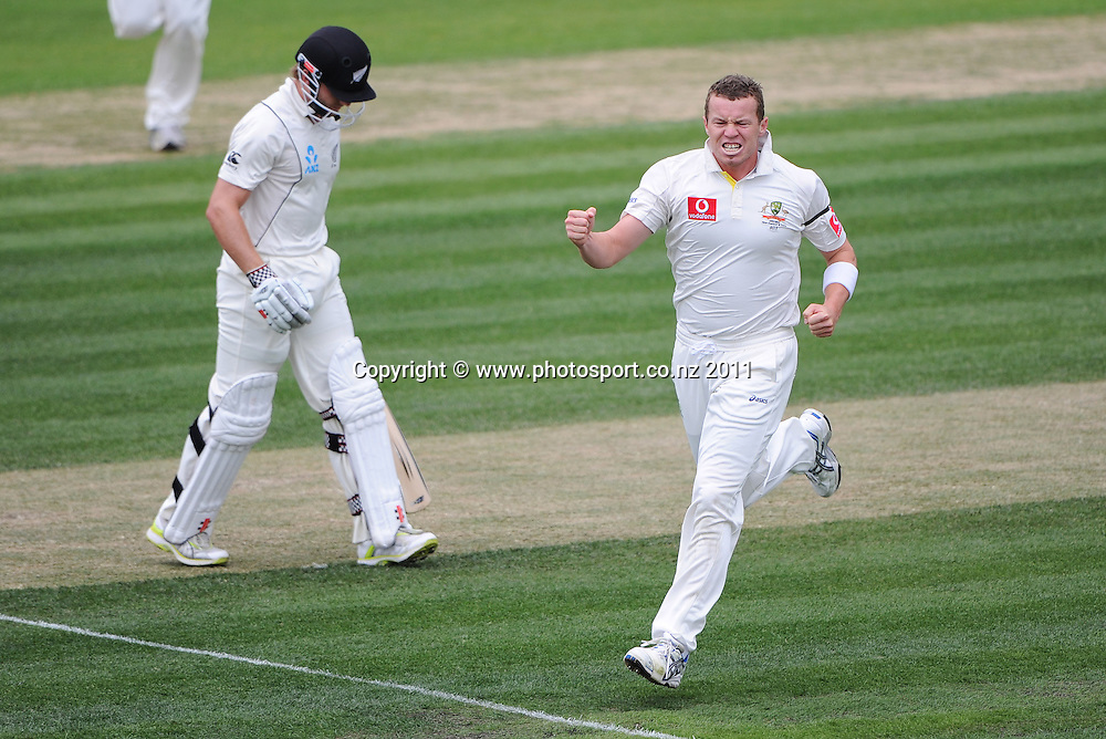 Peter Siddle celebrates the dismissal of Kane Williamson on Day 3 of the second cricket test between Australia and New Zealand Black Caps at Bellerive Oval in Hobart, Sunday 11 December 2011. Photo: Andrew Cornaga/Photosport.co.nz