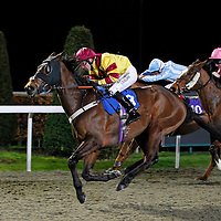 Officer In Command and Robert Winston winning the 6.30 race