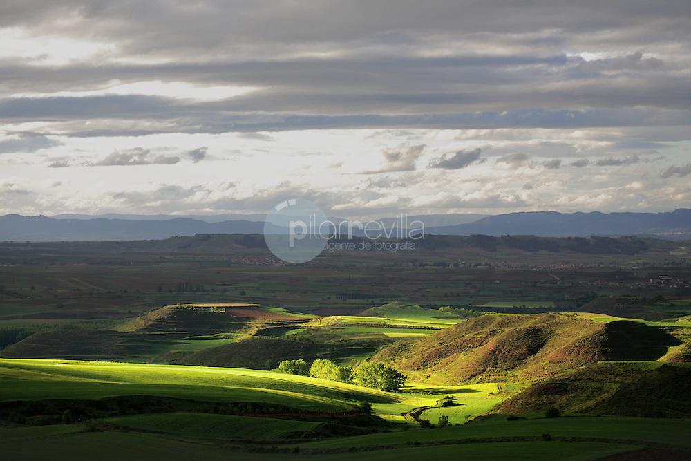Valle de Cardenas. Campos de cereal. La Rioja ©Daniel Acevedo / PILAR REVILLA