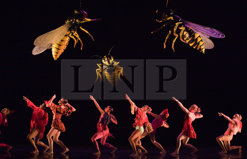 "© Licensed to London News Pictures. 15/05/2012. London, England. Rambert Dance Company - London Spring Season 2012. Performance of ""What Wild Ecstasy"" choreographed by Mark Baldwin, design by Michael Howells. Sadler's Wells Theatre, London. Photo credit: Bettina Strenske/LNP"