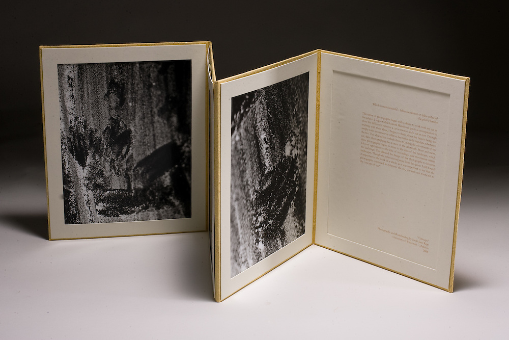 Artist: Sarah Jane Ripp. Hinged accordion hard panel book with three black and white photographs and a essay.