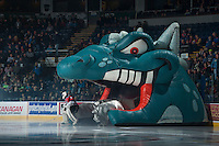 KELOWNA, CANADA - NOVEMBER 8: Michael Herringer #30 of Kelowna Rockets enters the ice against the Vancouver Giants on November 8, 2014 at Prospera Place in Kelowna, British Columbia, Canada.   (Photo by Marissa Baecker/Shoot the Breeze)  *** Local Caption *** Michael Herringer;