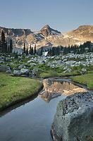 Mountains reflected in  creek, subalpine meadows of Marriott Basin, Coast Mountains British Columbia