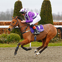 Kempton 13th April 2013